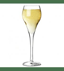 Arcoroc brio champagneglas 160ml
