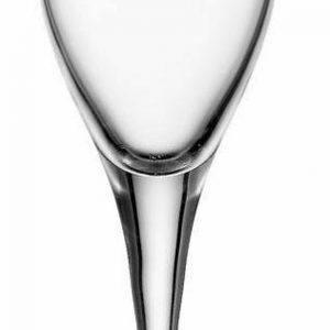 Champagneglas 17 cl Stölzle (6stk)
